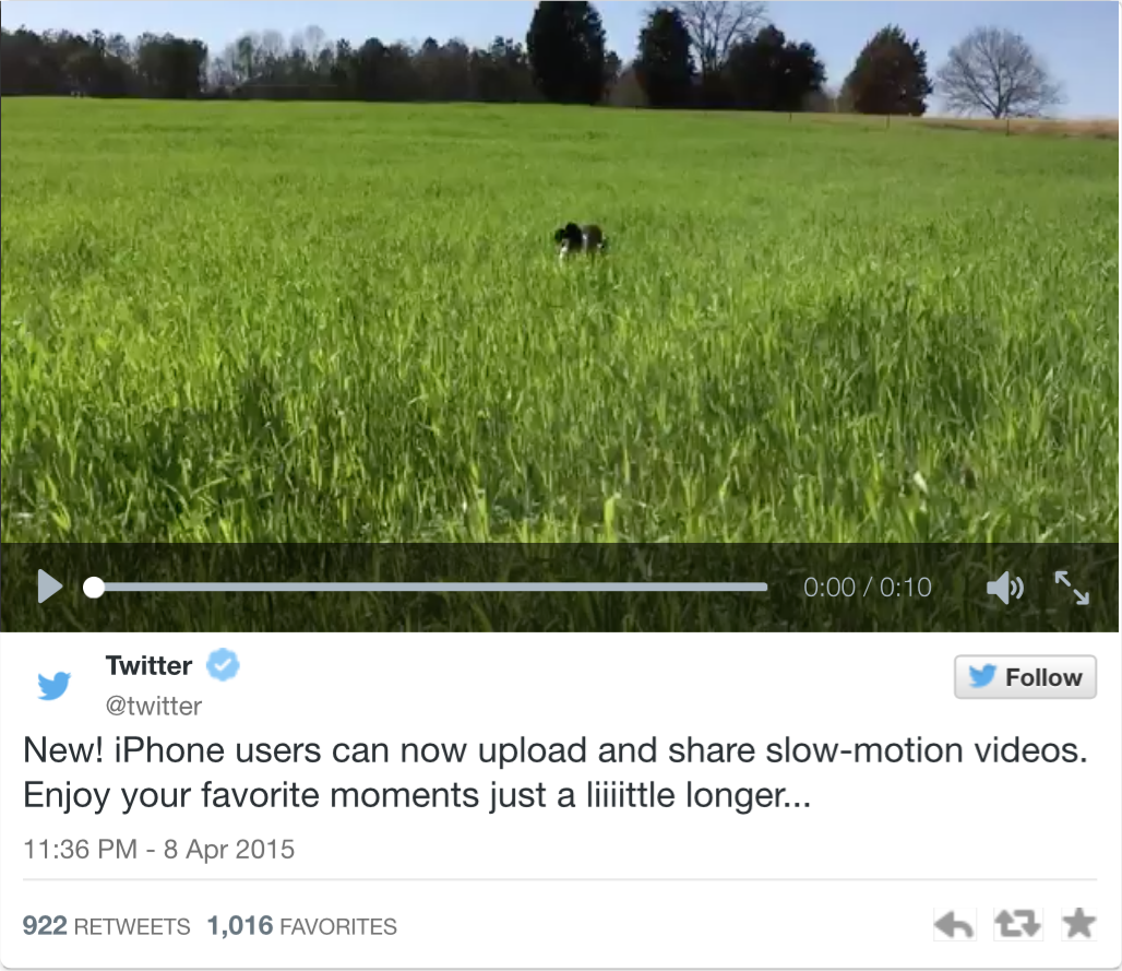 Twitter Slow-Motion