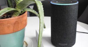Amazon Echo Apple Music